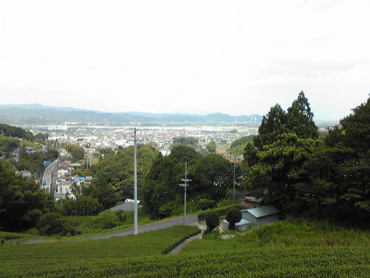 9日目:東海道をゆく(藤枝→掛川)